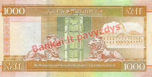 1000 Dolerių banknoto galinė pusė