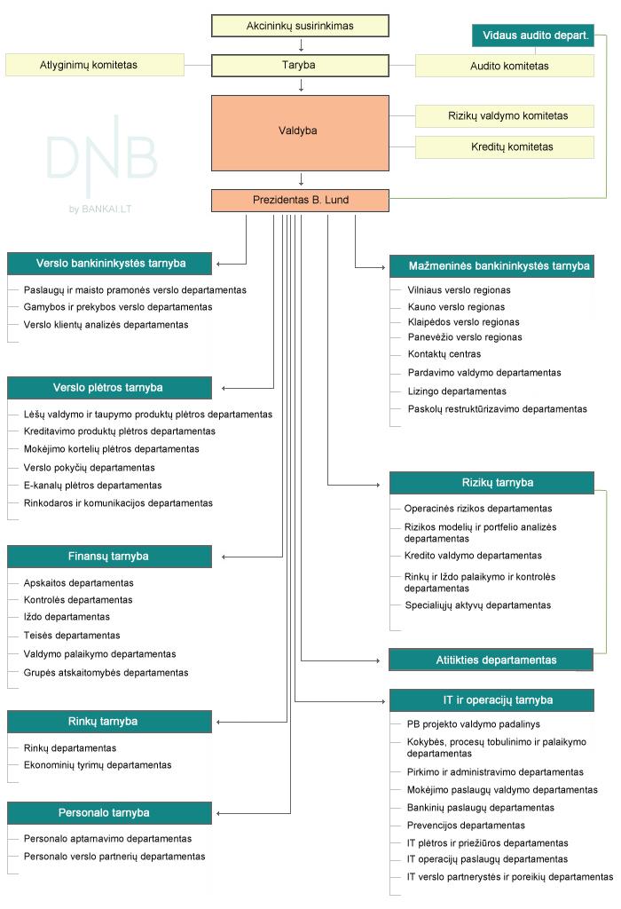 DNB organizacinė struktūra