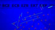 20 eurų ultravioletinis parašas