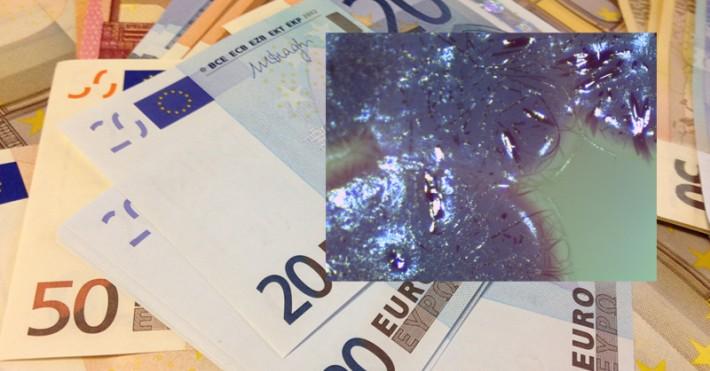 Eurai ir bakterijos
