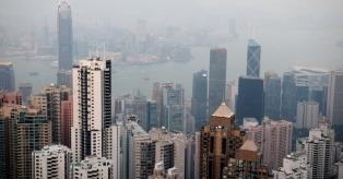 Honkongas mini