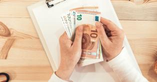 Pinigų politika mini